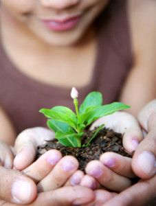 A sweet girl holding a sprouting plant