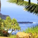 Maui Pahana Farms7