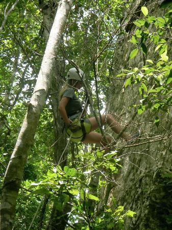 Selva Maya Rope Repel