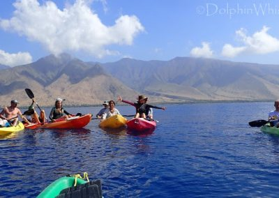 Maui Adventure - Kayaking with Whales1