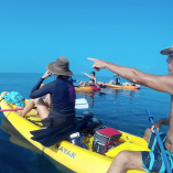 Maui Adventure - Kayaking with Whales8