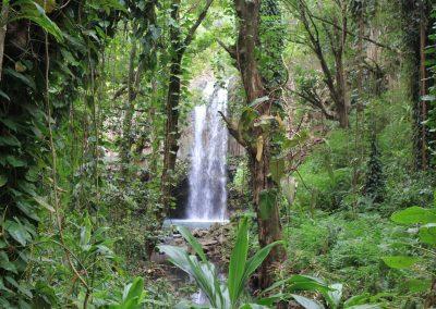 Maui Adventure - Waterfall Swim2